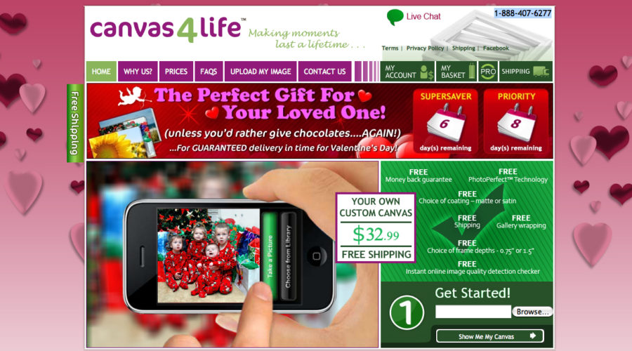 Canvas4Life pictures bigger growth with new CMO