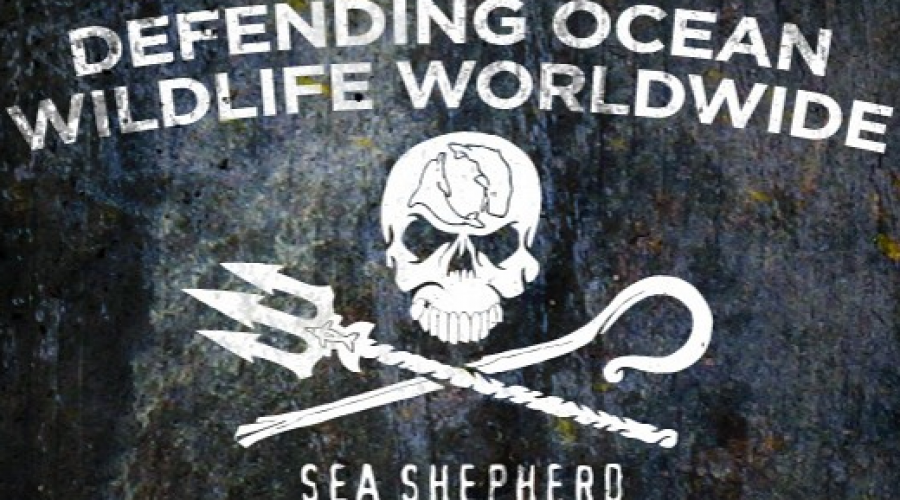 Sea Shepherd sets sites on new campaign