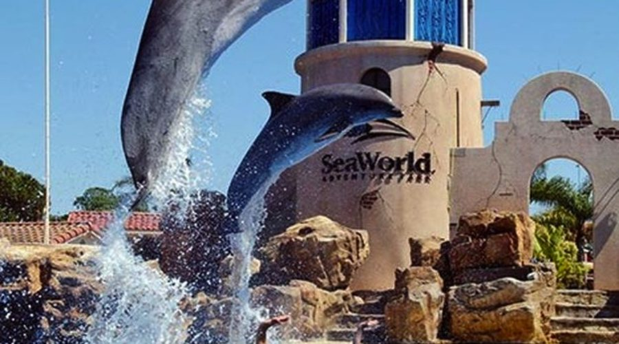 UPDATE: Seaworld's IPO now looks for $500 million