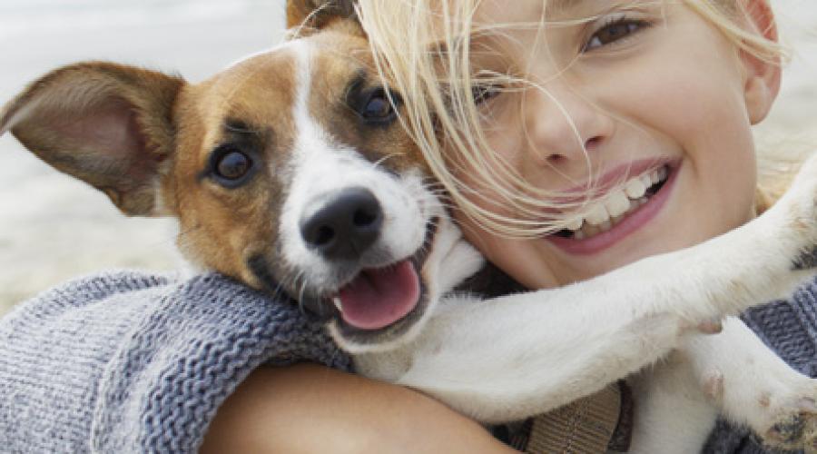 Smuckers adopts Big Heart Pet Brands