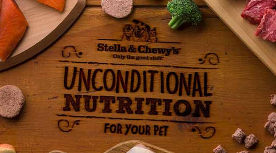 New CEO & CMO at Pet Food Company