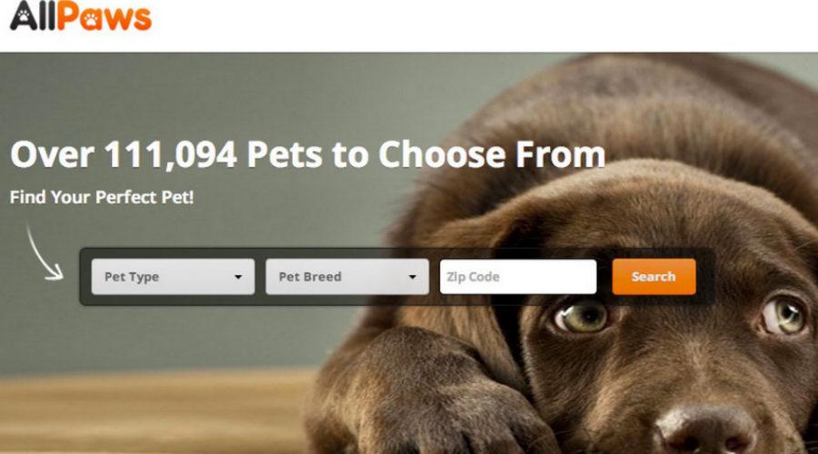 PetSmart buys pet adoption smart technology platform