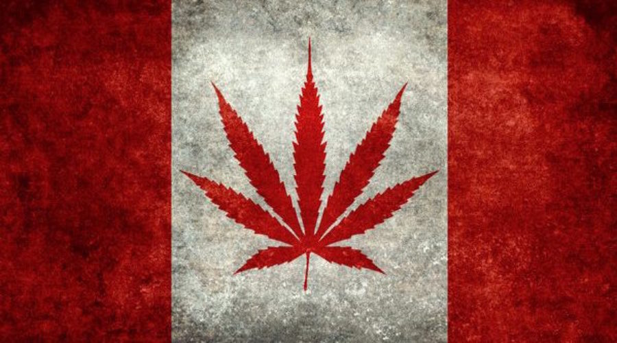 Cannabis Client in Canada with Copious Cash