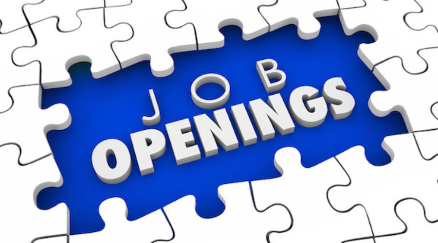 Vacant Marketing Positions to look into