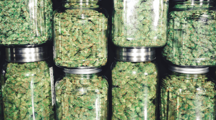 The folks born to sell weed got a CEO who so totally knows selling: Agency?