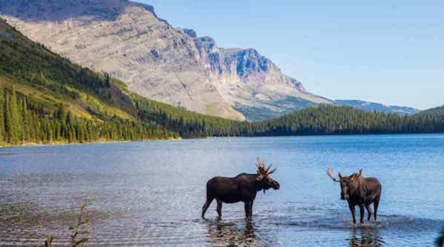 Montana city seeks brand, social, digital, print & outdoor for Tourism